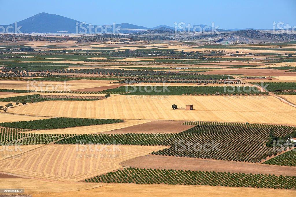 Farmland and Vineyards- La Mancha - Spain stock photo