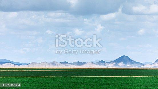 Farmland green fields. Arizona, USA