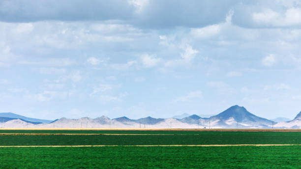 Farmland green fields - Arizona stock photo