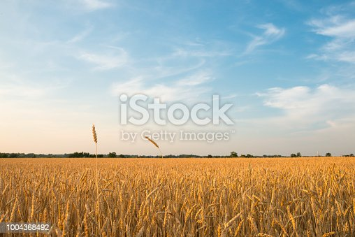 Farm land in Canada