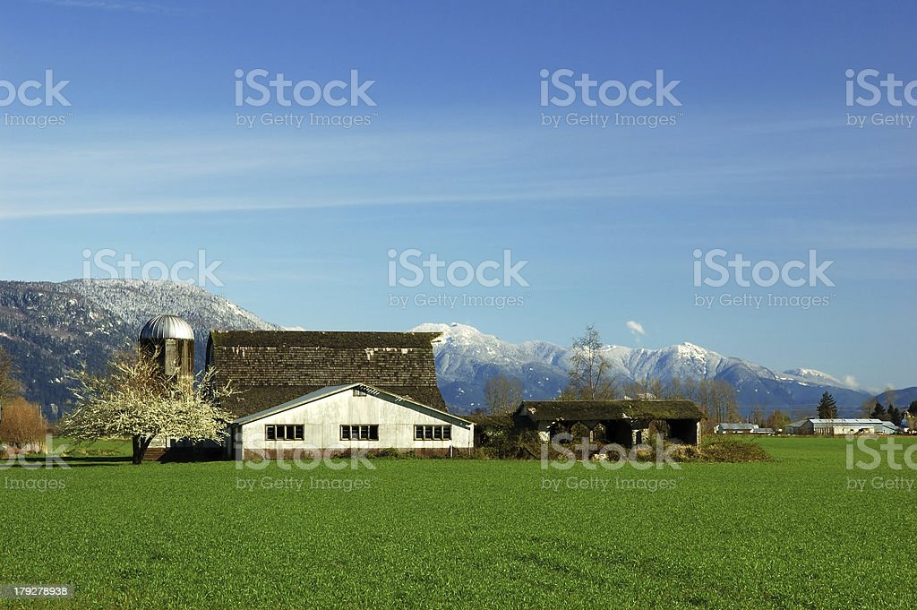 farmland in Fraser Valley royalty-free stock photo