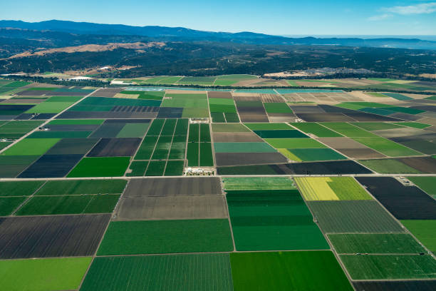 Farmland in Northern California Pacific coast of California with farmland close to the cities of Salinas and Monterey. The picture was taken in the early July. land feature stock pictures, royalty-free photos & images