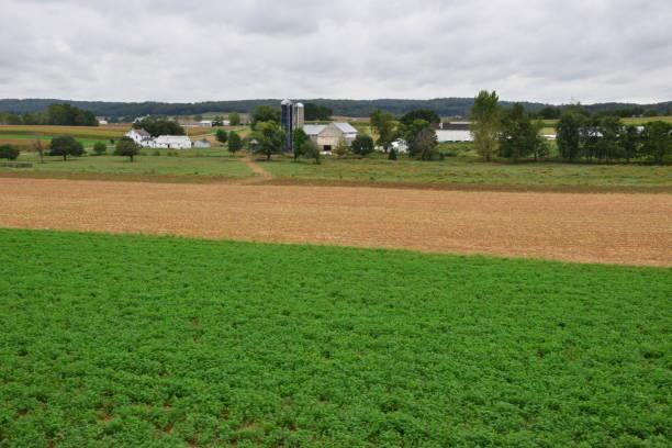 Farmland in Strasburg, Pennsylvania. – Foto