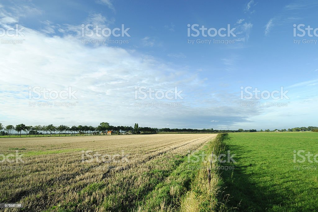 Farmland in the Netherlands royalty-free stock photo