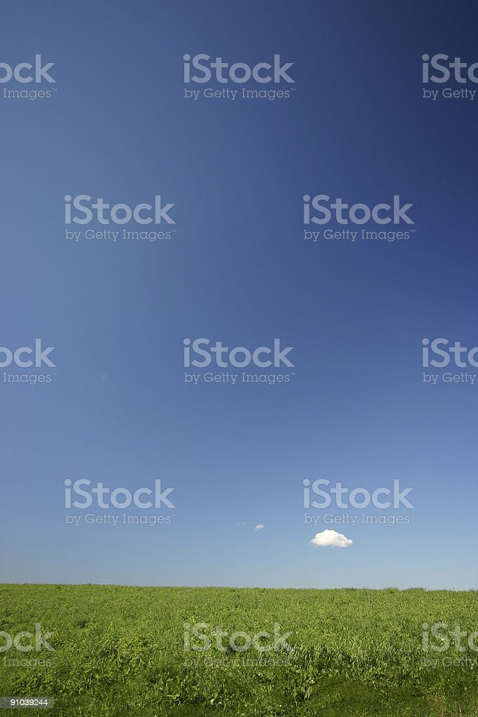 Farmland in the Summer royalty-free stock photo