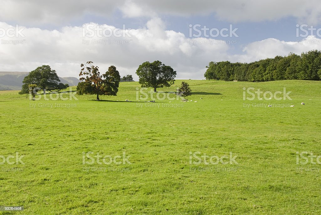 Farmland, Lake District, UK royalty-free stock photo