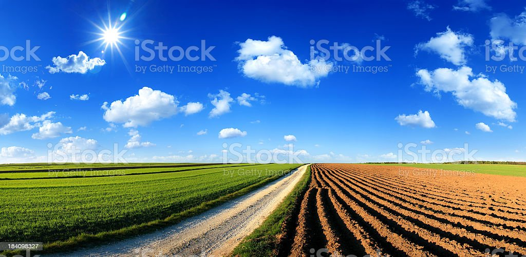 Farmland landscape - Green field and Country Road royalty-free stock photo