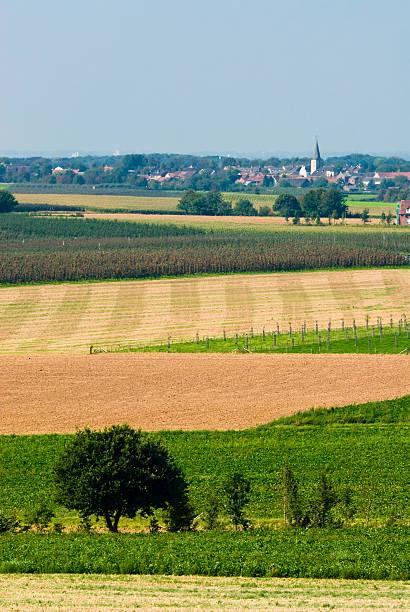 farmland Landschaft – Foto