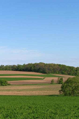 Farm fields on rolling hills.