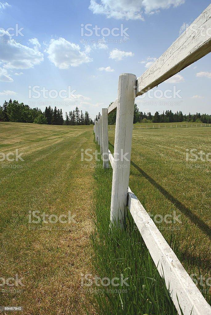 Farmland foto de stock libre de derechos