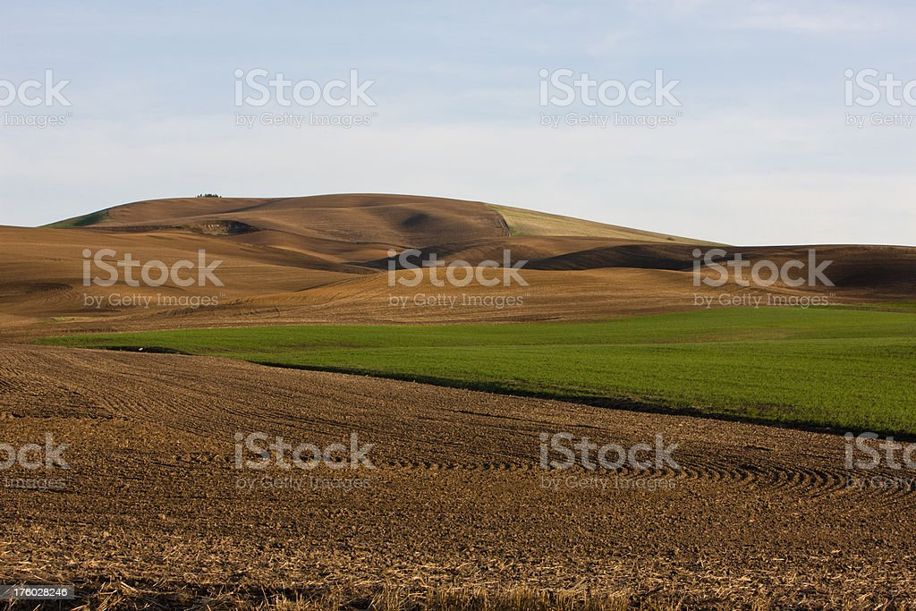 Farmland Recently Plowed royalty-free stock photo