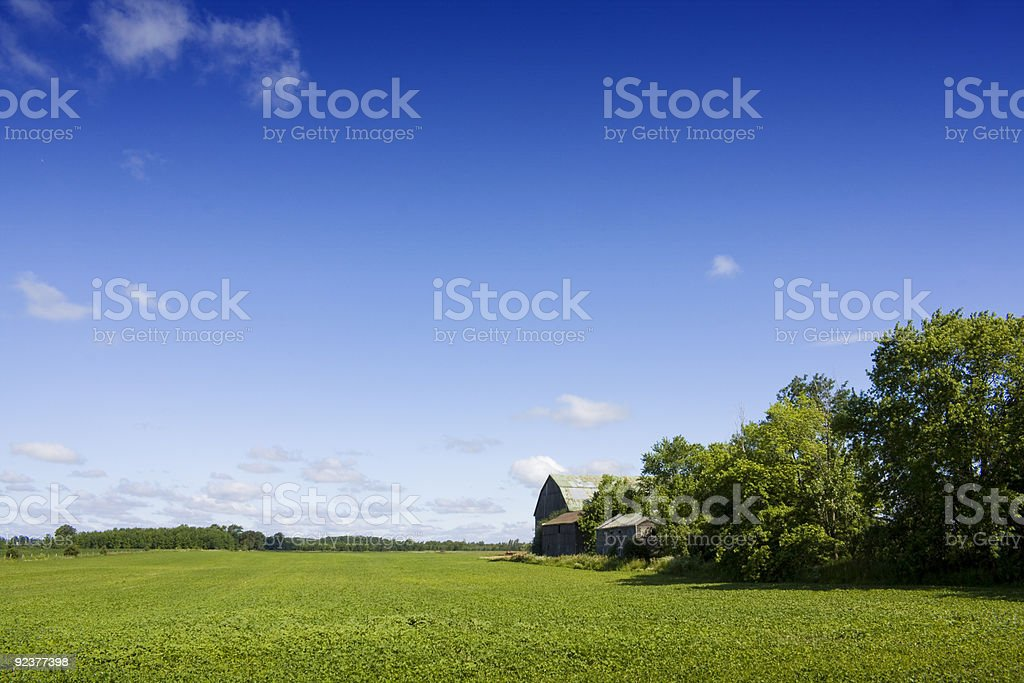 Farmland with bright blue sky royalty-free stock photo