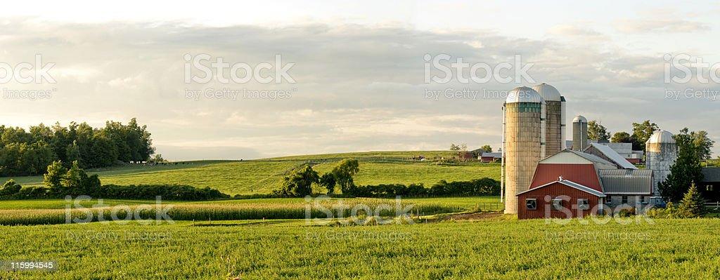 Farms and Barns Panorama stock photo