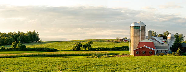 Farms and Barns Panorama Evening Panorama in Rural New York State dairy farm stock pictures, royalty-free photos & images