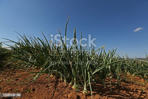 istock farms and industries that produce agribusiness 1048406196