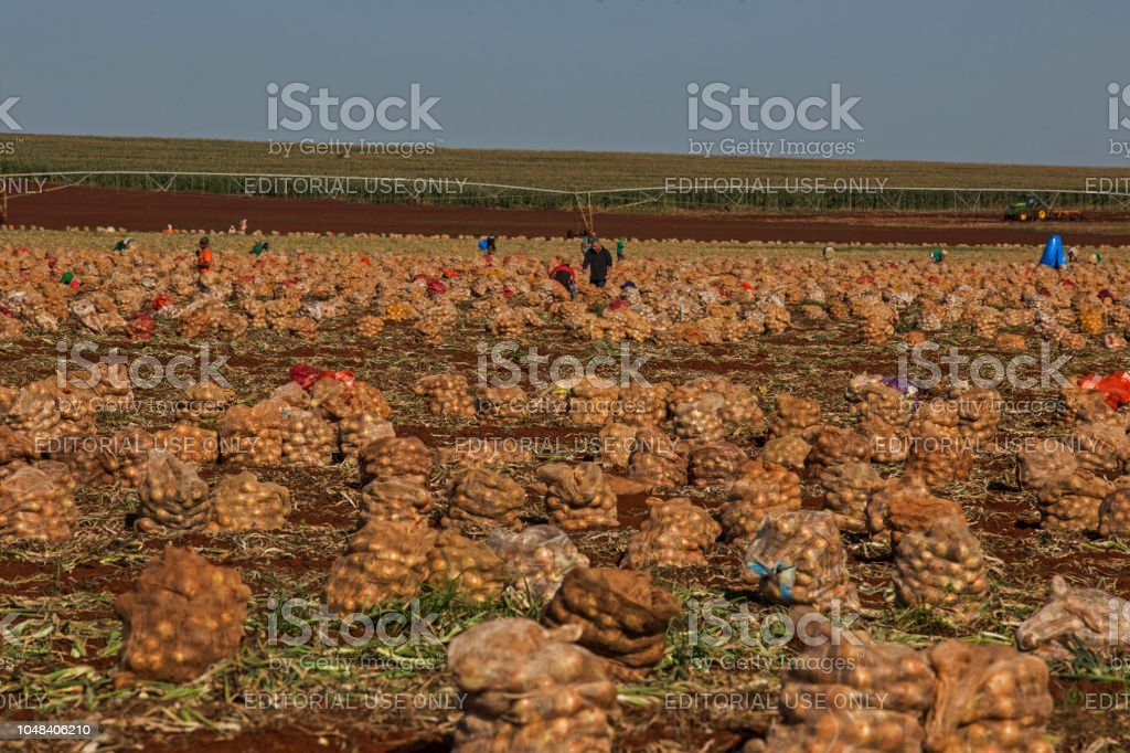 farms and industries that produce agribusiness stock photo