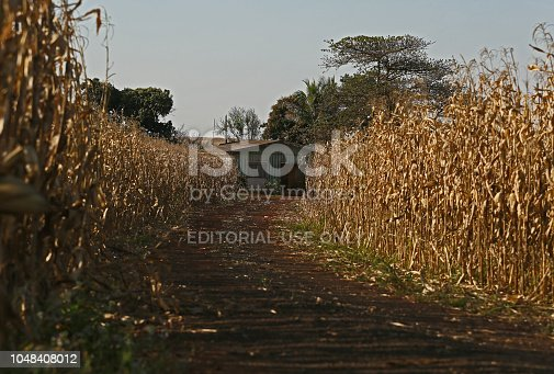 istock farms and industries that produce agribusiness 1048408012
