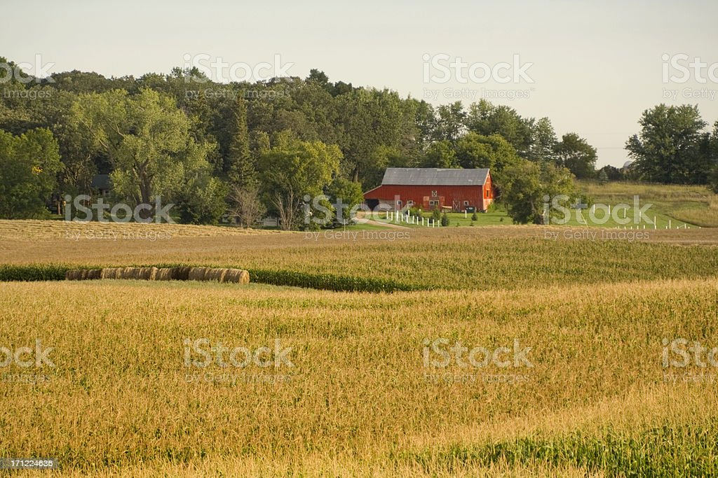 Farmstead by the Woods royalty-free stock photo