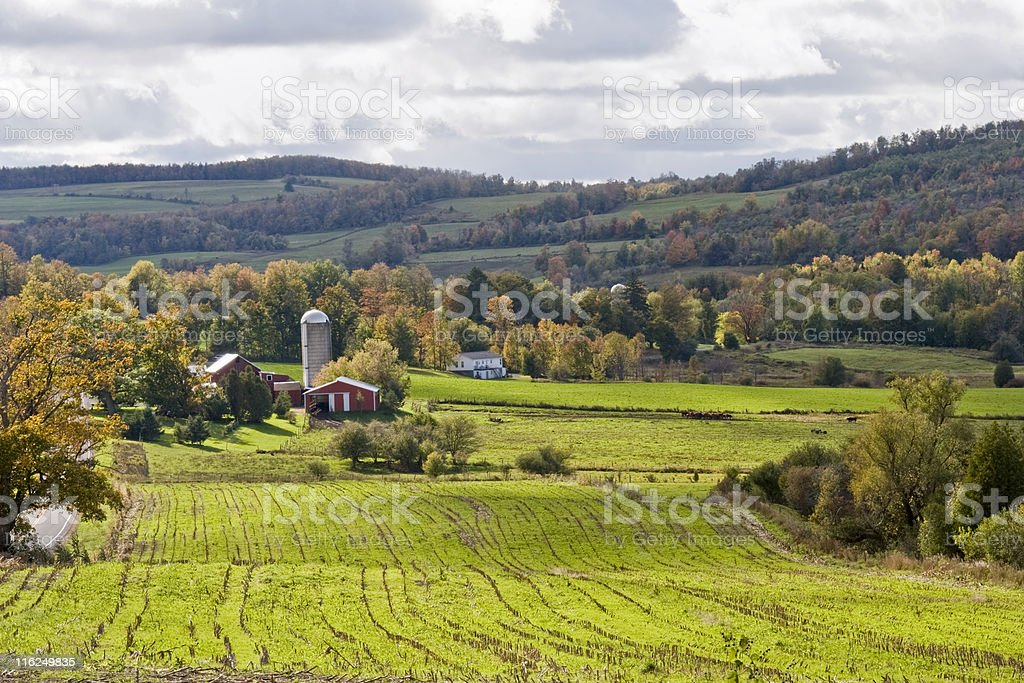 Farmstead under Scattered Sunlight stock photo