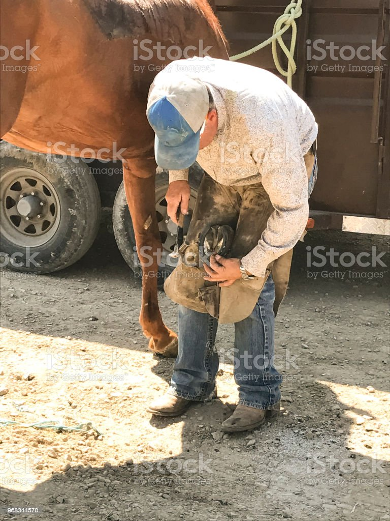 Farrier Working On A Horses Feet stock photo