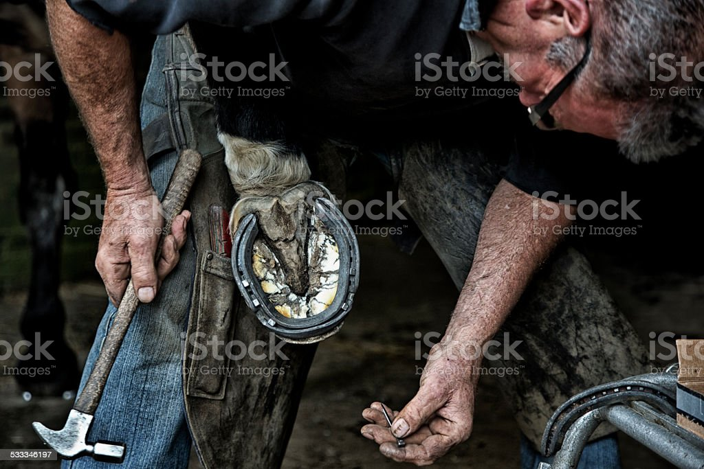 Farrier working with horseshoes stock photo