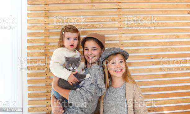 Fashion cute little girls sisters with a british kitten in the arms picture id1165292096?b=1&k=6&m=1165292096&s=612x612&h=mcmtqodlaigsnlr2touju6ysonf582pwjkq45hc2m q=