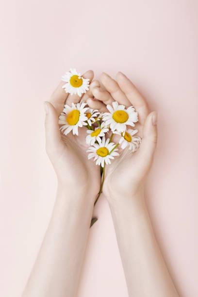 Fashion hand art chamomile natural cosmetics women white beautiful picture id1053637608?b=1&k=6&m=1053637608&s=612x612&w=0&h=1pcp5mk4ji ecle0wiksh5bim84nzt2qkqytcz2ja4e=