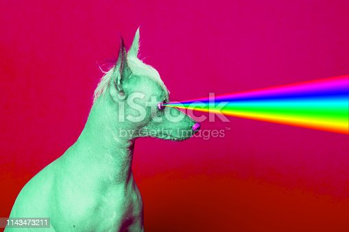 istock Fashion hipster Dog with rainbow lasers from eyes. 1143473211