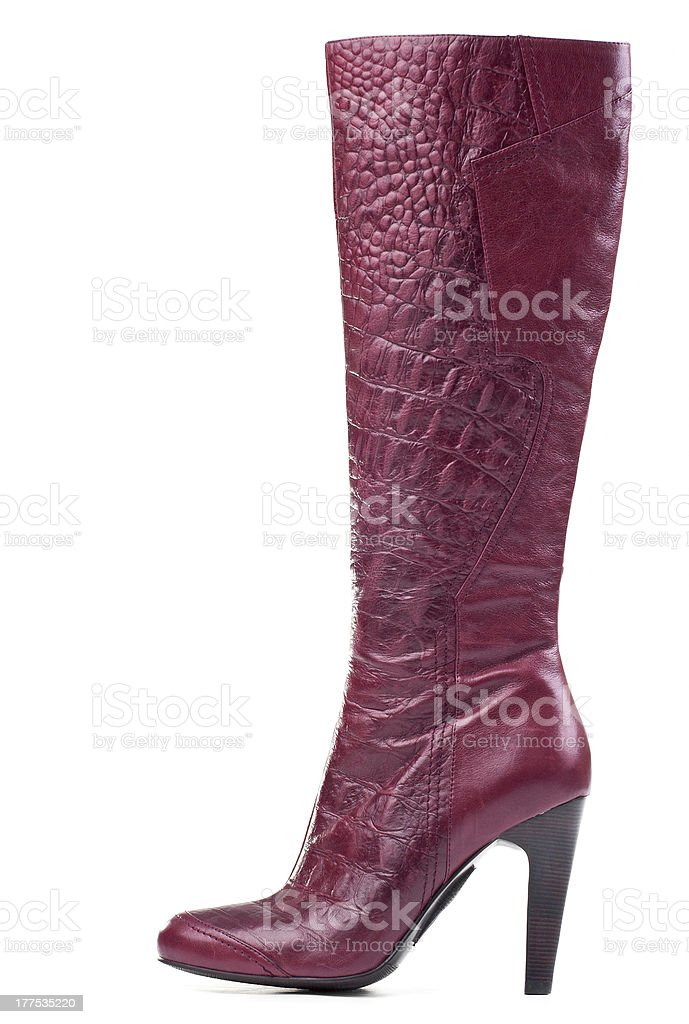 Fashion knee-high boot isolated over white stock photo