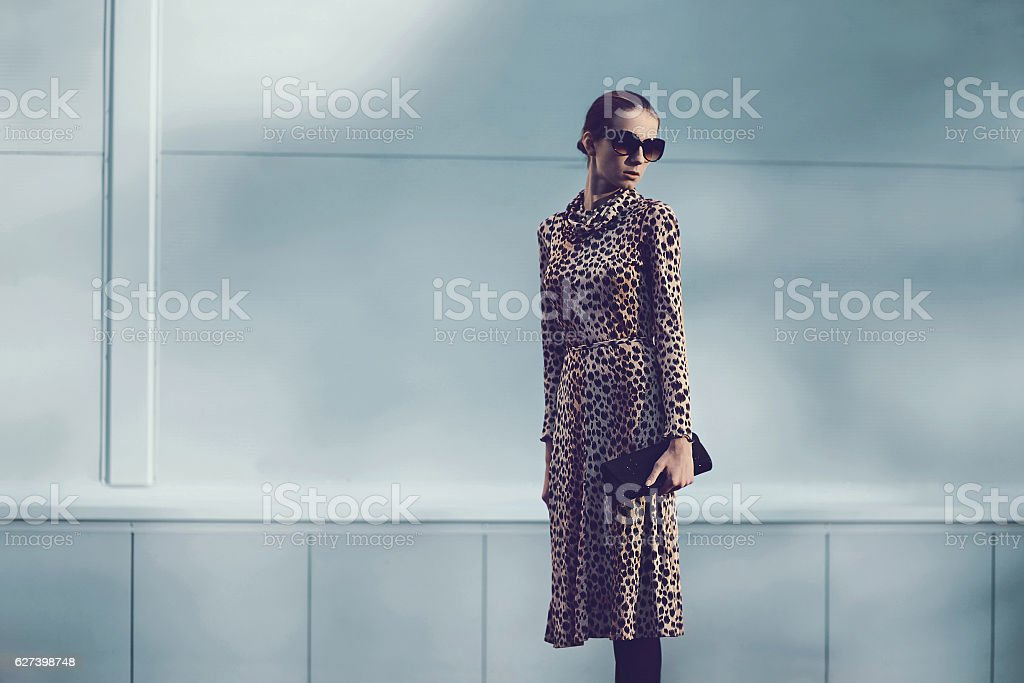Fashion luxury woman wearing leopard dress, handbag clutch in city stock photo