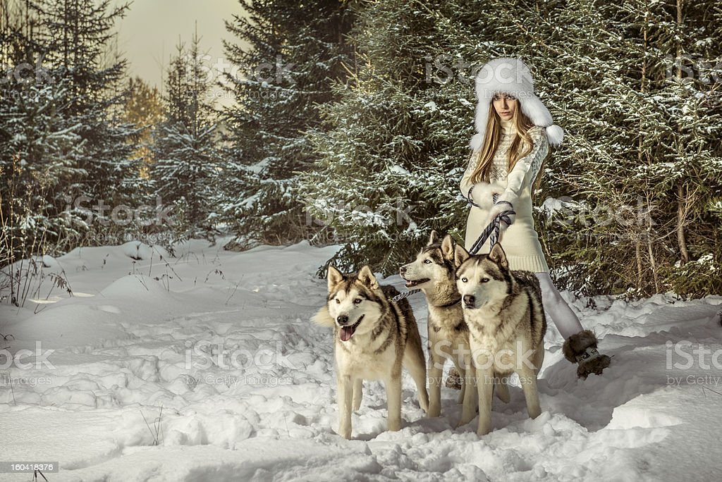 Fashion portrait of beautiful woman with three dogs royalty-free stock photo