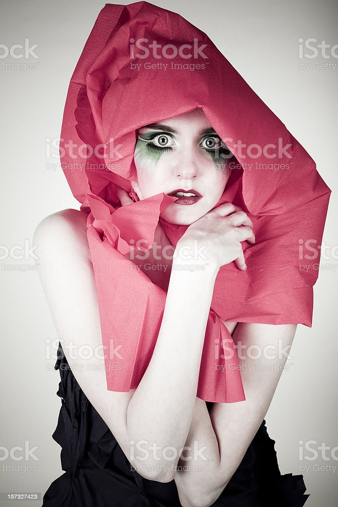 Fashion Portrait royalty-free stock photo