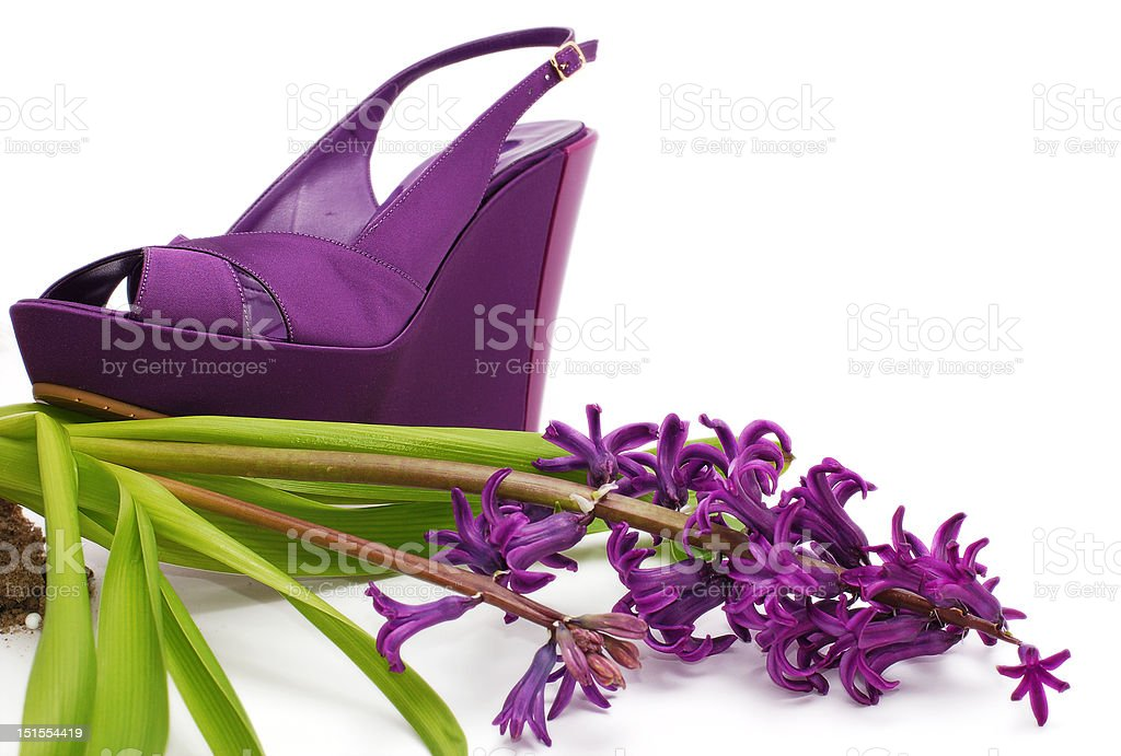 Fashion shoe and flower royalty-free stock photo