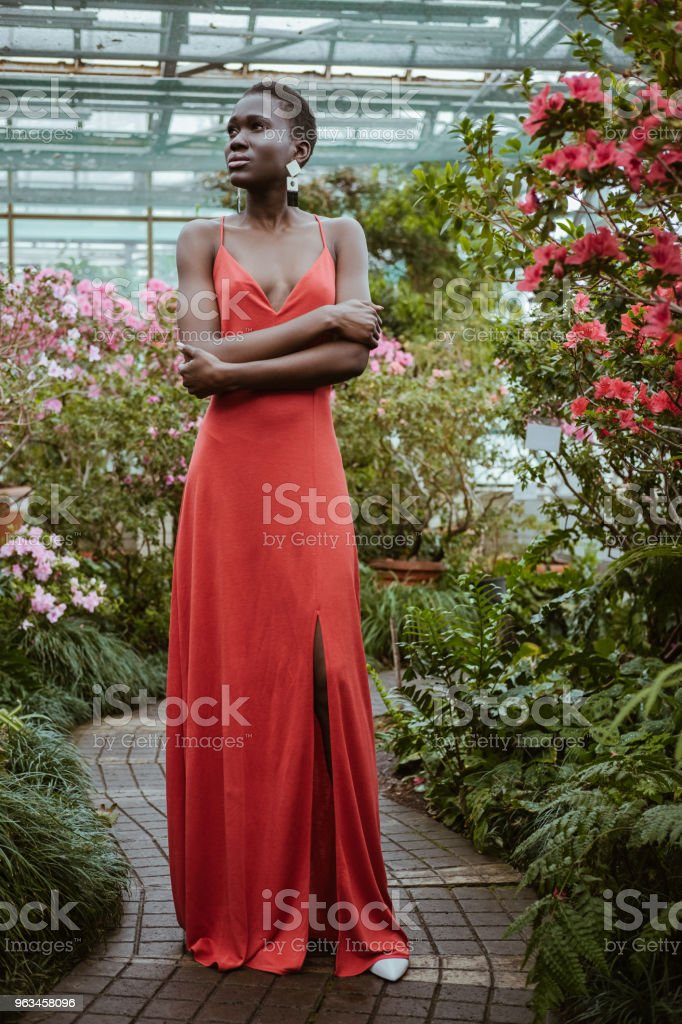 fashionable african american model in red dress with crossed arms posing in garden with flowers - Zbiór zdjęć royalty-free (Afro)