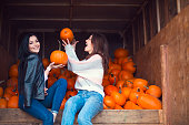 Fashionable beautiful young girlfriends together at the autumn pumpkin patch background. Having fun and posing. Toned in retro style