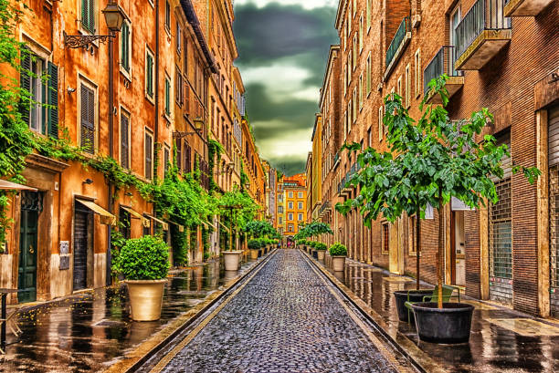 fashionable cobbled italian street with planters after the rain - rome road central view foto e immagini stock