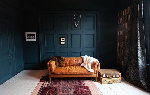 Fashionable Living Room interior