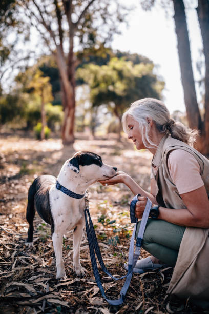 Fashionable mature woman relaxing in nature with pet dog picture id979349122?b=1&k=6&m=979349122&s=612x612&w=0&h=v0grvbab1yx 4qn6w1425nctqbop6uexdtl5tl4mgj8=