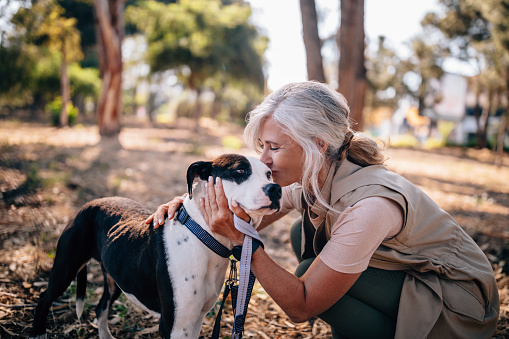 istock Fashionable senior woman kissing pet dog in nature 979320018
