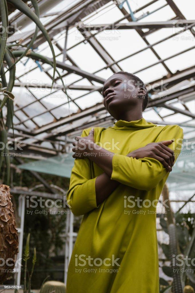 à la mode femme afro-américaine sensuelle, qui pose en serre - Photo de A la mode libre de droits