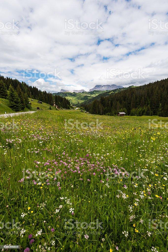 Val di Fassa dolomites stock photo