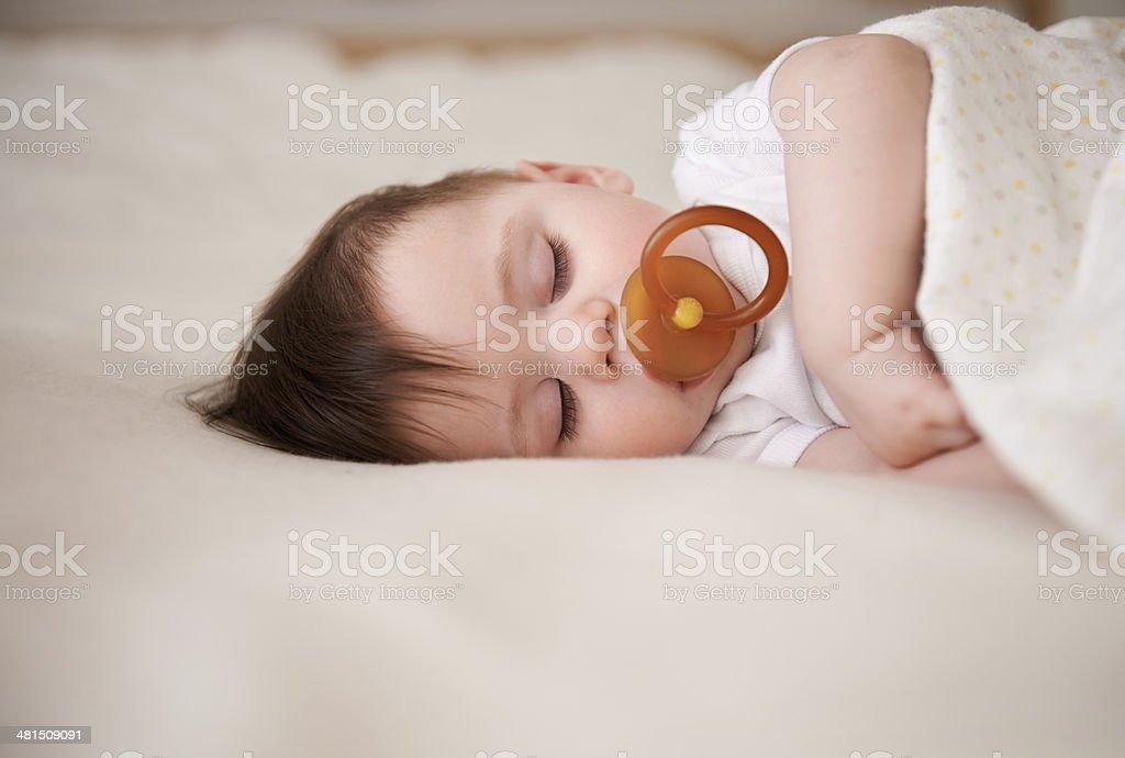 Fast asleep... stock photo