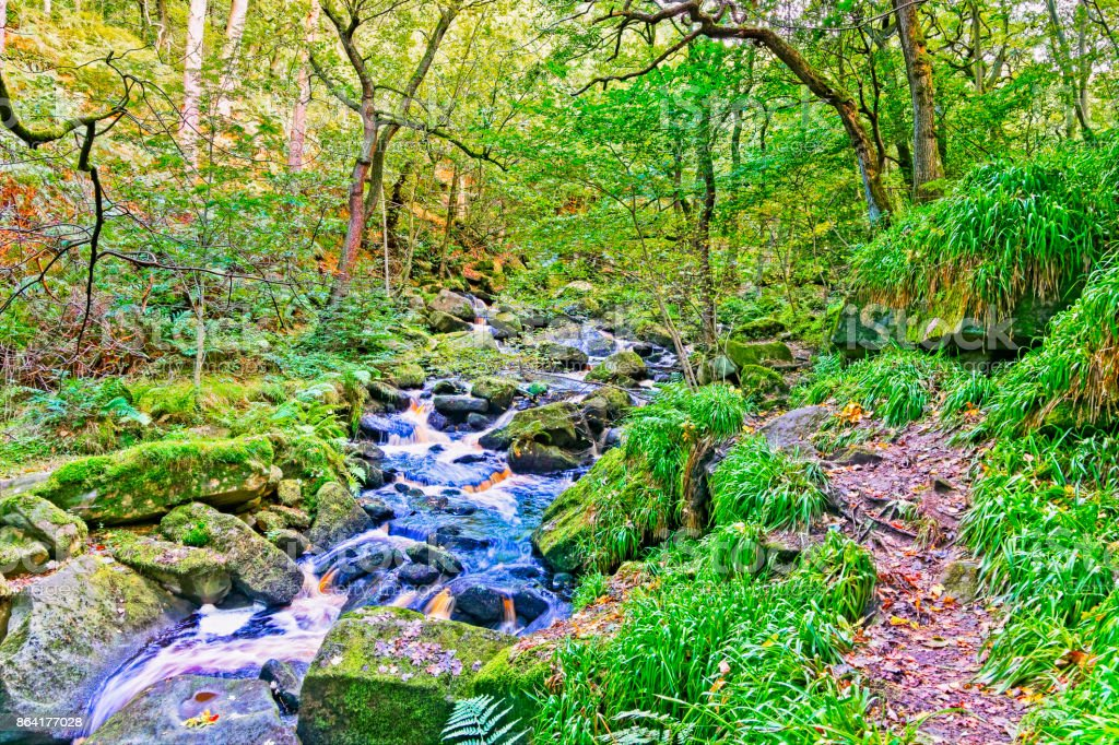 Fast flowing woodland stream passing over rocks. royalty-free stock photo