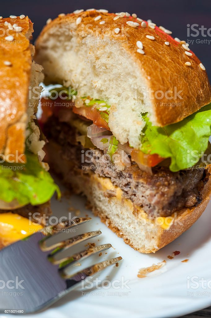 Fast food: hamburger with vegetables on plate Lizenzfreies stock-foto