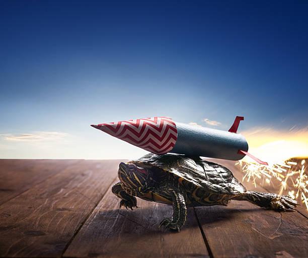 Fast hero turtle with rocket propulsion on blue sky picture id494501920?b=1&k=6&m=494501920&s=612x612&w=0&h=kjvfxgziyul7ynp 61xmfqmlg hwmydukhbjr tnsxo=