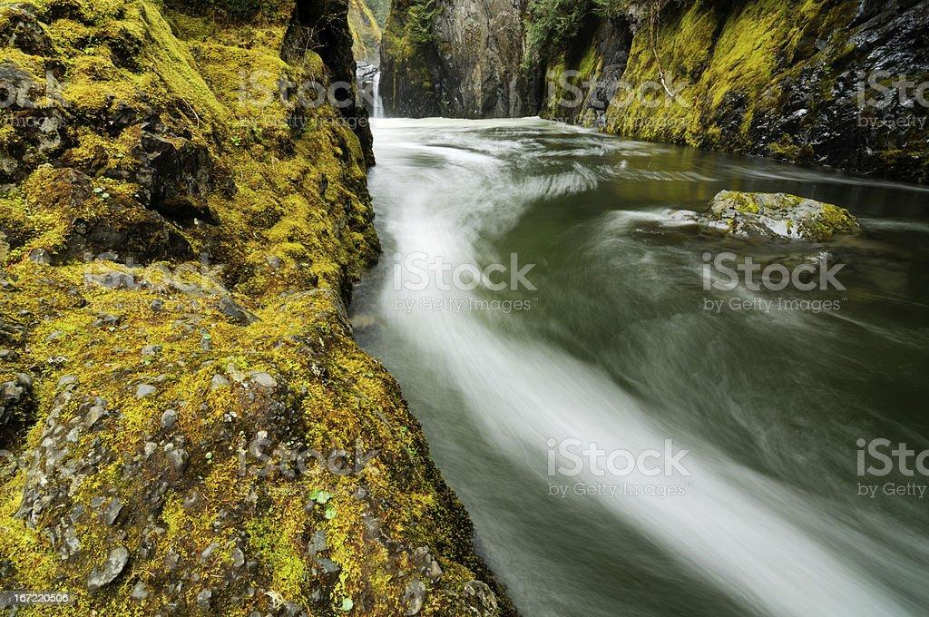 Fast mountain stream in Vancouver Island, Canada stock photo