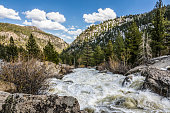 Eastern Sierra Nevada and the Carson River in springtime. Alpine County, California. Western United States.