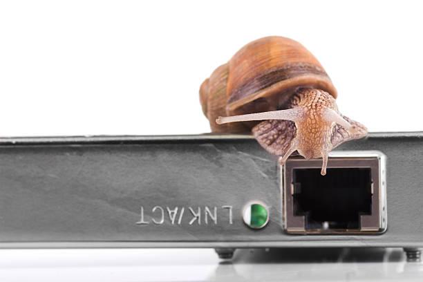 szybkie netto - powolny zdjęcia i obrazy z banku zdjęć