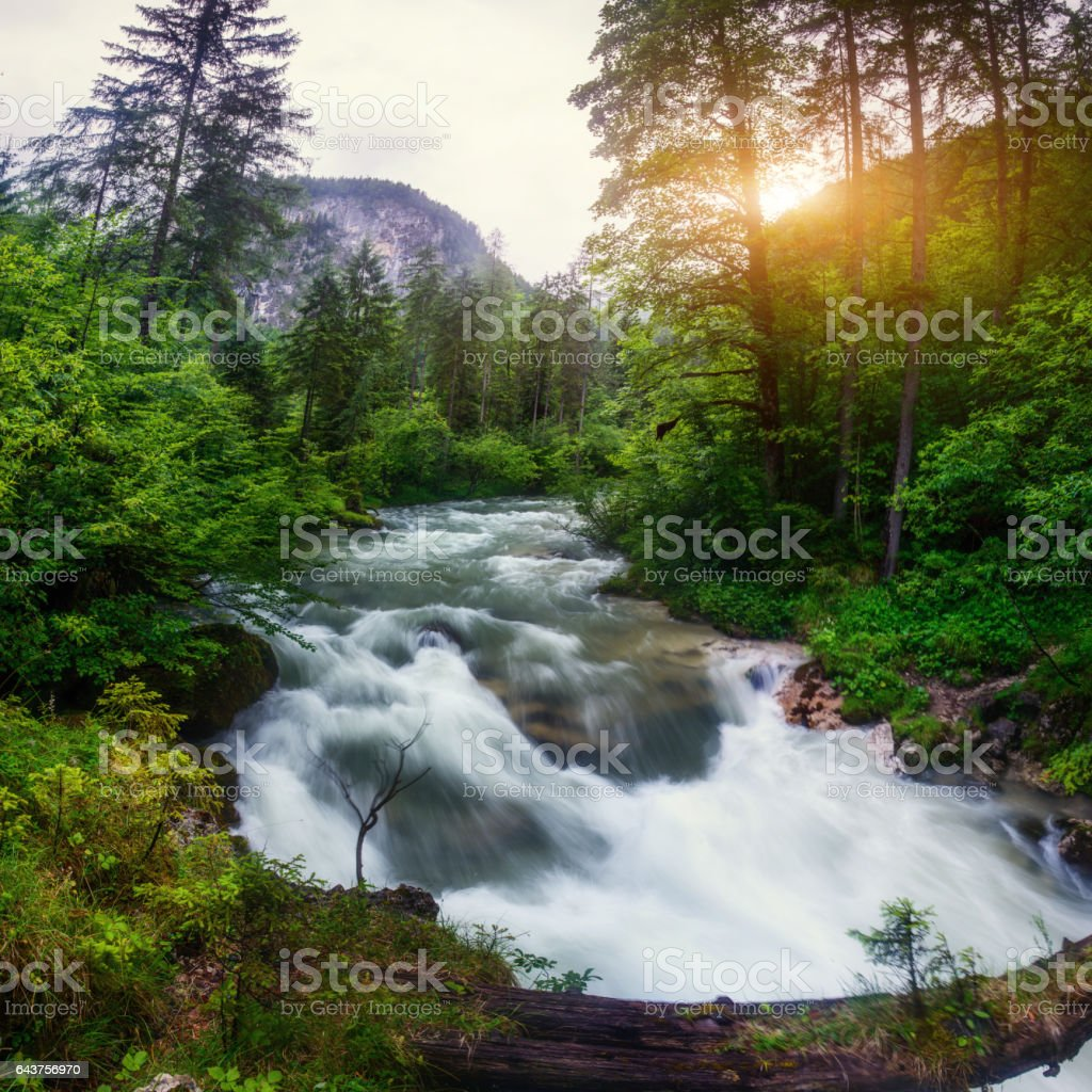 fast river in the mountains stock photo