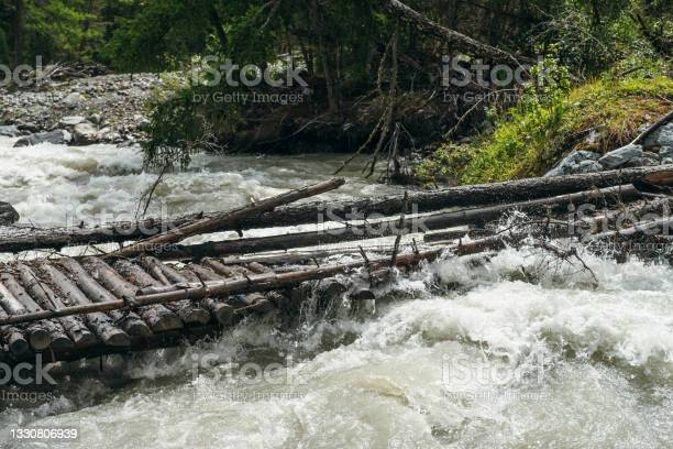 Photo of Fast turbulent river with broken bridge in water. Scenic mountain landscape with log bridge across river. Beautiful scenery with wooden bridge over mountain creek. Powerful rapids in mountain river.
